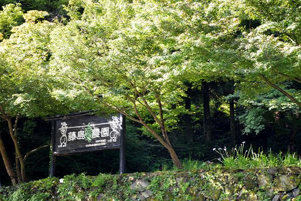 fujishima-farm-kanban