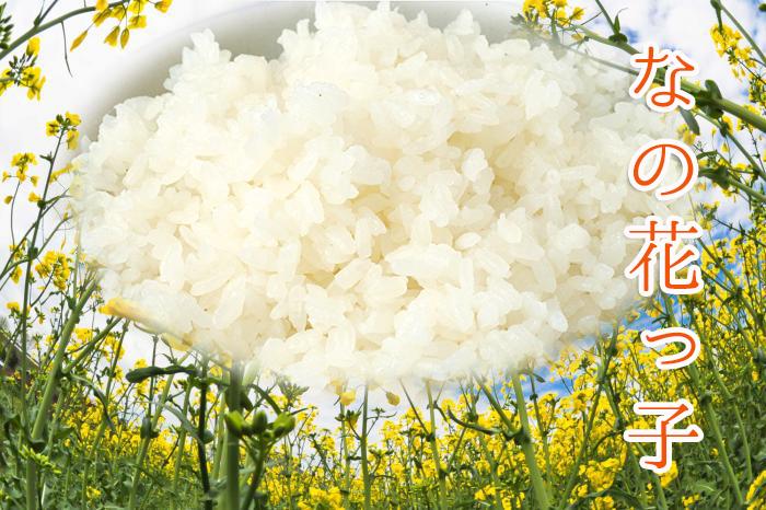 農薬や化学肥料に頼らない昔ながらの自然農法でで育てる安心のお米をお召し上がりください。農事組合法人・下崎・長尾・鳥井原営農組合|福岡県