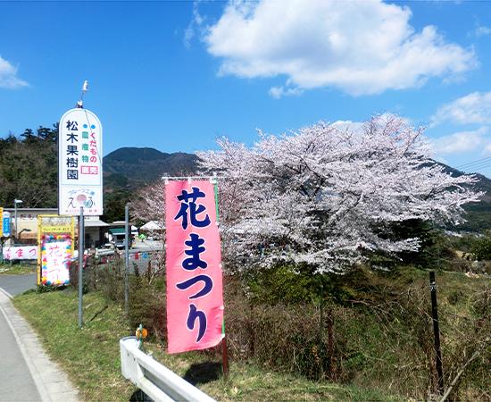 松木果樹園【花まつり】開催(3/29/sun)!フルーツ工房えふ【3月のメニュー】です。