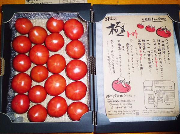 kodawari-tomato1