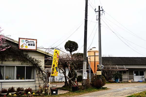中西養鶏場直売所