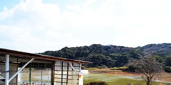 BBQスペースから見える池