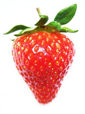 いちご 苺 イチゴ