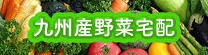 九州産野菜宅配