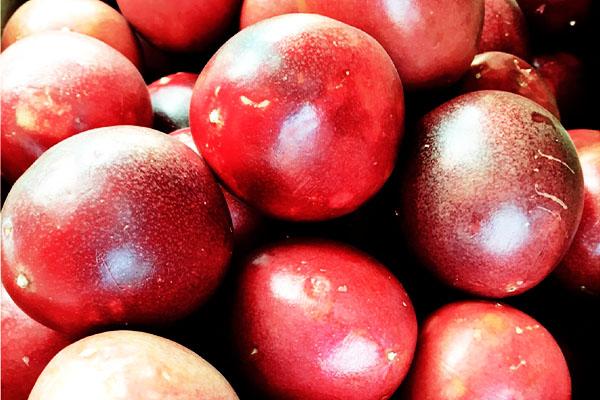パッションフルーツの旬 – 九州のフルーツ
