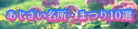 紫陽花が見れるスポット
