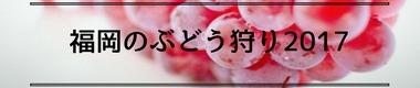 福岡県でオススメのぶどう狩り観光農園特集2017