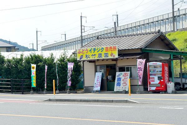 秋竹農園直売所
