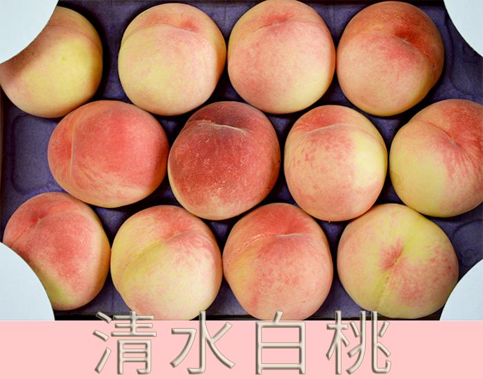 高級品種の白桃「清水白桃」 末永果樹園(福岡県行橋市)