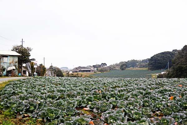 中西養鶏場|福岡県北九州市