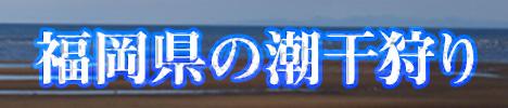 福岡県のオススメ潮干狩りスポット2017|福岡県