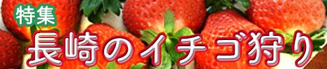 長崎県でおすすめのイチゴ狩り特集|2017年