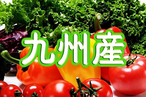 九州産無農薬野菜・有機野菜の宅配を県ごとにまとめました