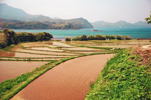 長崎県の空き家バンク