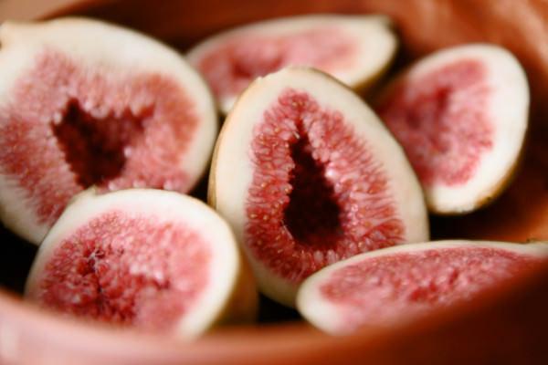 イチジク 無花果 いちじく – 九州のフルーツ