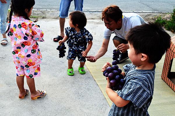 ぶどう狩りなら、みよばあちゃんのぶどう畑|福岡県宮若市